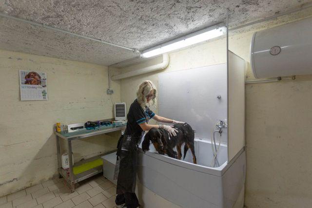 Studio+Veterinario-Dr.+P.F.+Garatti-Pian+Camuno-077-640w